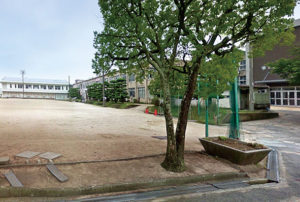 桑山中学校(約700m・徒歩9分)