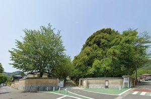 下関市立長府中学校(約350m 徒歩5分)